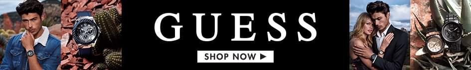 Guess Banner Logo