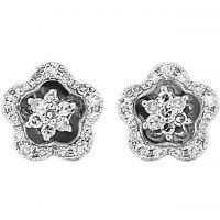 Jewellery Earring Watch ER856