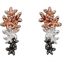 Elements Dames Floral Drop Earrings Sterling Zilver E5353