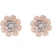 Ladies Ted Baker Rose Gold Plated Seraa Crystal Daisy Lace Stud Earring TBJ1584-24-02