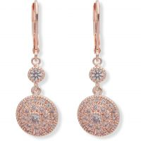 Ladies Anne Klein Rose Gold Plated Stunning Stones Earrings 60466549-9DH