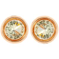 Fiorelli Jewellery Stud Earrings JEWEL XE4875