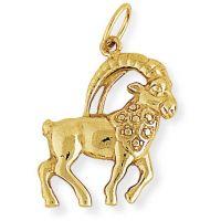 Jewellery Pendant Watch ZDCN1