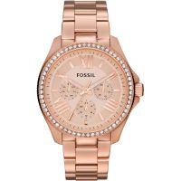 Damen Fossil Cecile Watch AM4483