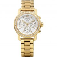Damen Coach Legacy Watch 14501883