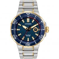Mens Citizen Endeavor Eco-Drive Watch