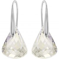 Ladies Swarovski Stainless Steel Lunar Earrings 1046084