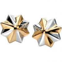 Fiorelli Dam Earrings Sterlingsilver E5076